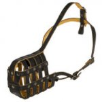 Boston Terrier Dog Muzzle of Nappa Padded Leather, Royal