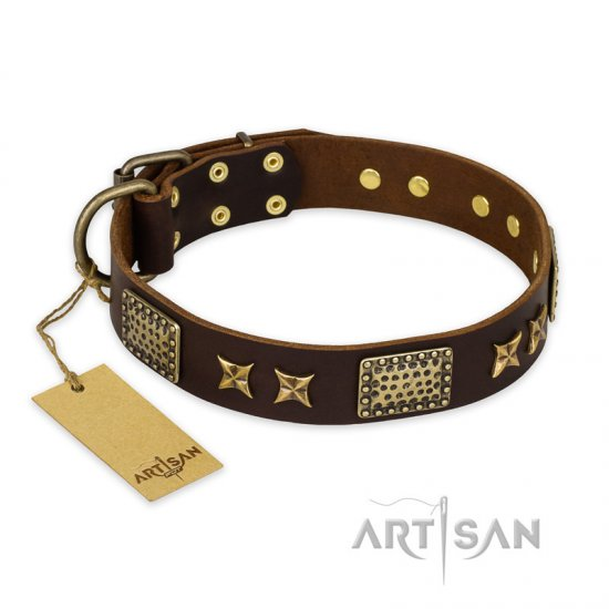 "Leather Collar for English Bulldog ""Sparkling Bronze"" FDT Artisan - Click Image to Close"