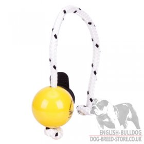 Top-Matic Fun Ball SOFT with Multi Power-Clip for Small Bulldog