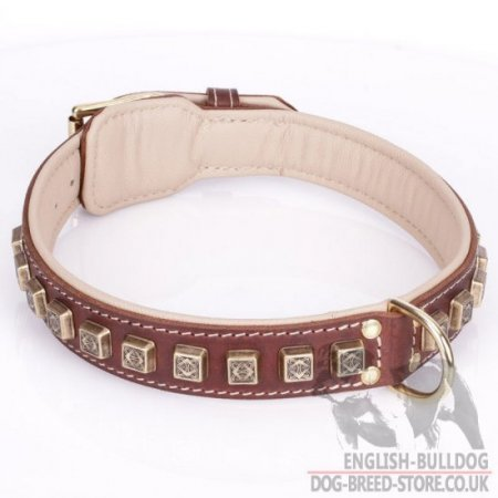 "Leather Collar for English Bulldog ""Cube"" of Brown Color"