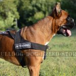 No Pull Dog Harness for Boxer of Nylon with Patches and Handle