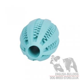 "Dental Care Dog Toy ""Denta Fun Rugby Ball"" with Mint Flavor for Bulldog"