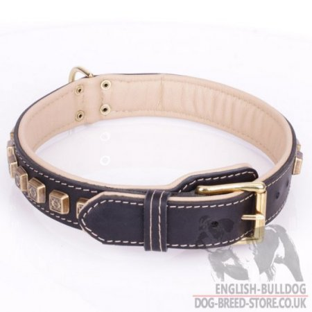 "English Bulldog Leather Collar ""Cube"" with Nappa and Brass Details"