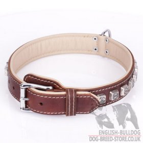 "English Bulldog Dog Collar of Brown Leather ""Cube"""