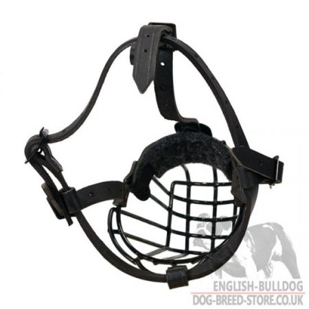 American Bulldog Basket Muzzle with Rust-Proof Polymer Coating