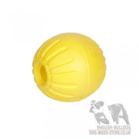 Hard Ball Dog Toy Lightweight, Unsinkable and Resistant to Bites