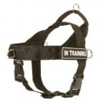 No Pull Harness for Boston Terrier of Nylon with ID Side Patches