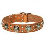 """A Diamond of Blue Water"" English Bulldog Leather Dog Collar"