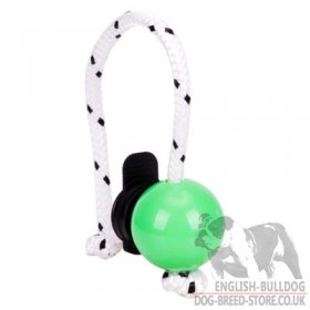 Top-Matic Magnetic Ball Mini with Multi Power-Clip for Small and Young Bulldog