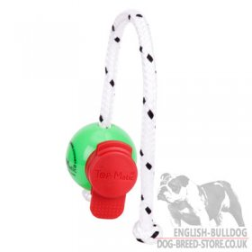 Magnetic Ball for Dog Training with MAXI Power-Clip, Top-Matic
