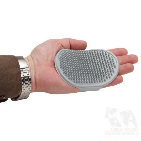 Bestseller! Dog Grooming Brush of Rubber for Bulldog Coat Care, Massage