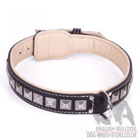 "Dog Collar for English Bulldog ""Pyramid"" of Black Leather"