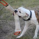 Dog Training Tug Extra Large for American Bulldog, Natural Jute