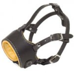 Padded Dog Muzzle of Leather with Nappa for English Bulldog