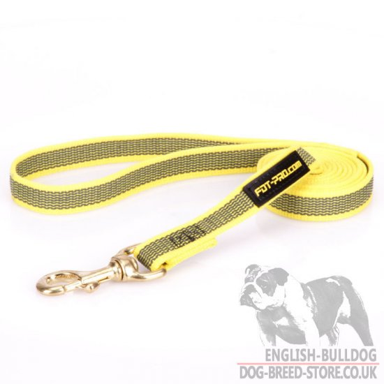 English Bulldog Lead