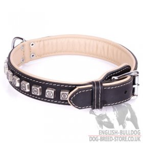 "English Bulldog Dog Collar ""Cube"" with Nappa Padding"