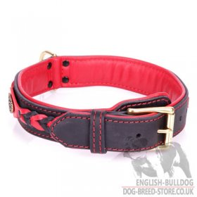 "English Bulldog Leather Collar ""Heavy Fire"" in Red and Black"