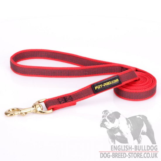 Leash for English Bulldog of Rubberized Non-Slip Red Nylon