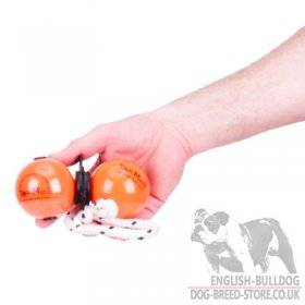 Top-Matic Profi-Set of 2 Magnetic Balls and a Clip for Bulldog Training