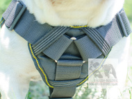 Dog Harness UK for Bulldog | Nylon Harness for Bulldogs! &#10106