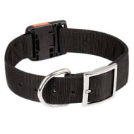 Nylon Collar with Quick Release Buckle