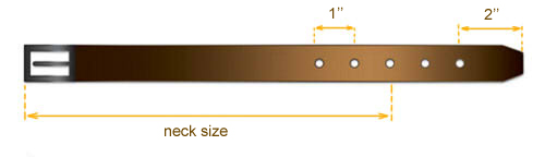 collar size diagram