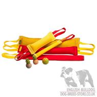 Bulldog Training Set with Dog Ball and 2 Rubber Balls as a Gift!