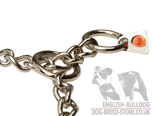 Chain Collar for Bully Solid Rings