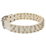 Spiked Dog Collar for Bulldogs, White Leather, Barbs in 3 Rows