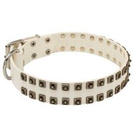 Handmade Dog Collar for Bulldog of White Leather with Studs