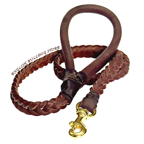 Braided Dog Leash UK