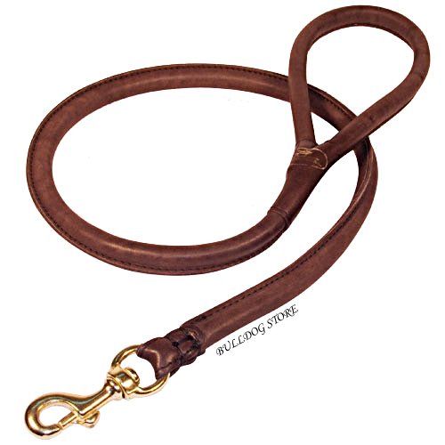 English Bulldog Leash