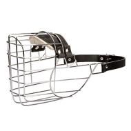 Wire Dog Muzzle for American Bulldog