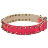 Ultimate Dog Collar with Spikes in Pink Leather for Female Bully