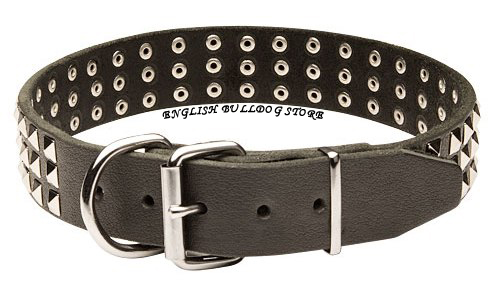 Bulldog Collars UK