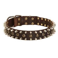 Leather Dog Collar with Silver Spikes and Round Studs