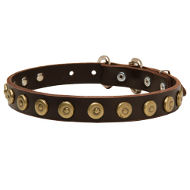 Leather Dog Collar with Round Dotted Studs for English Bulldog