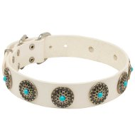 White Leather Dog Collar with Blue Stones for English Bulldog
