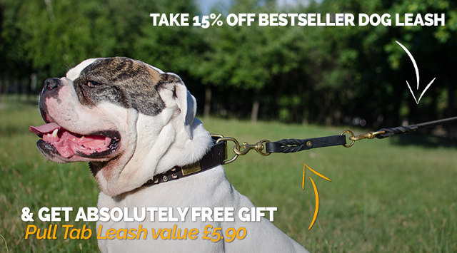 1 Price for 2 Leashes