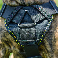 Best Boxer Dog Harness of Durable Nylon for Multifunctional Use