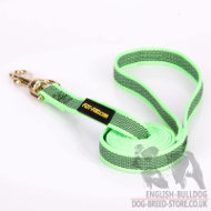 Best Bulldog Leash of Green Nylon with Nonslip Rubber Threads