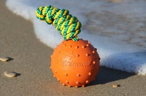 Best Dog Toys for English Bulldogs