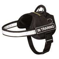 Boston Terrier Dog Harness of Nylon with Reflective Strap