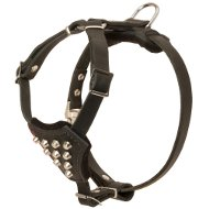 Boston Terrier Harness Leather Studded for Dogs and Puppies