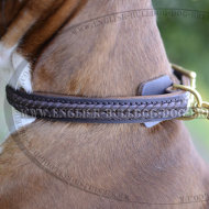 Boxer Leather Dog Collar of Double Strength with Elegant Braid