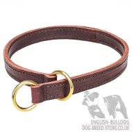 Bulldog Collar for Obedience Training, Two-Ply Leather and Brass