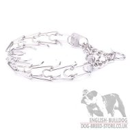 Bulldog Collar Martingale with Prongs for Behavior Correction