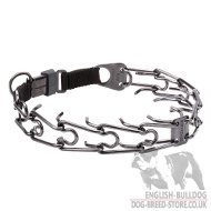 Bulldog Collar Pinch, Click Lock Buckle, Black Stainless Steel