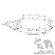 Bulldog Collar Pinch Martingale for Obedience and Good Behavior
