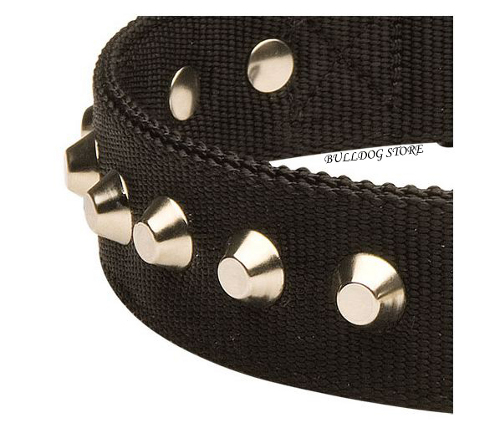 Nylon Dog Collar UK Studded